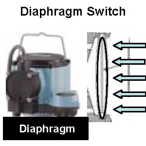 Diaphragm Switch